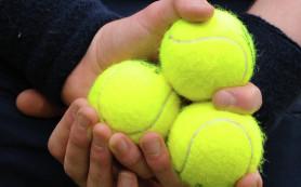 Андерсон проиграл во втором круге теннисного турнира в Делрэй-Бич