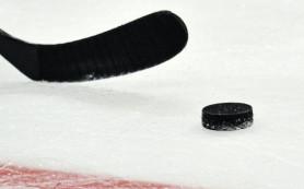 Хоккеисты «Колорадо» нанесли поражение «Аризоне» в матче НХЛ