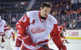 Шайба Дацюка помогла «Детройту» одолеть «Сан-Хосе» в матче НХЛ