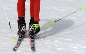 Лыжник Андрей Ларьков стал чемпионом России на дистанции 70 километров