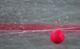 Хоккей с мячом войдёт в программу зимней Универсиады-2019 в Красноярске
