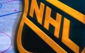 Хоккеист Никулин может продолжить карьеру в одном из клубов НХЛ