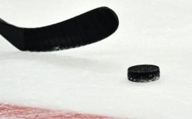 Самая молодая юниорская сборная РФ по хоккею отправилась на ЧМ в США