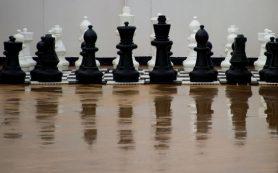 Россия обыгрывает КНР перед последним туром шахматного товарищеского матча