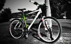 Особенности выбора велосипедов компании «Deluxe Sport»