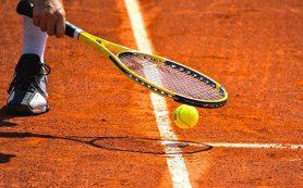 Теннисисты сборной России сыграют с голландцами в матче Кубка Дэвиса