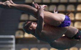 В Будапеште прыгуны в воду первыми вступают в борьбу за медали