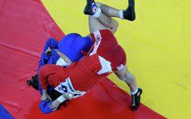 Опубликовано видео драки российских самбисток на турнире во Владивостоке