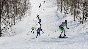 Норвегия требует не допускать россиян на этапы Кубка мира по лыжам